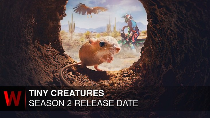 Tiny Creatures Season 2: Release date, News, Cast and Episodes Number